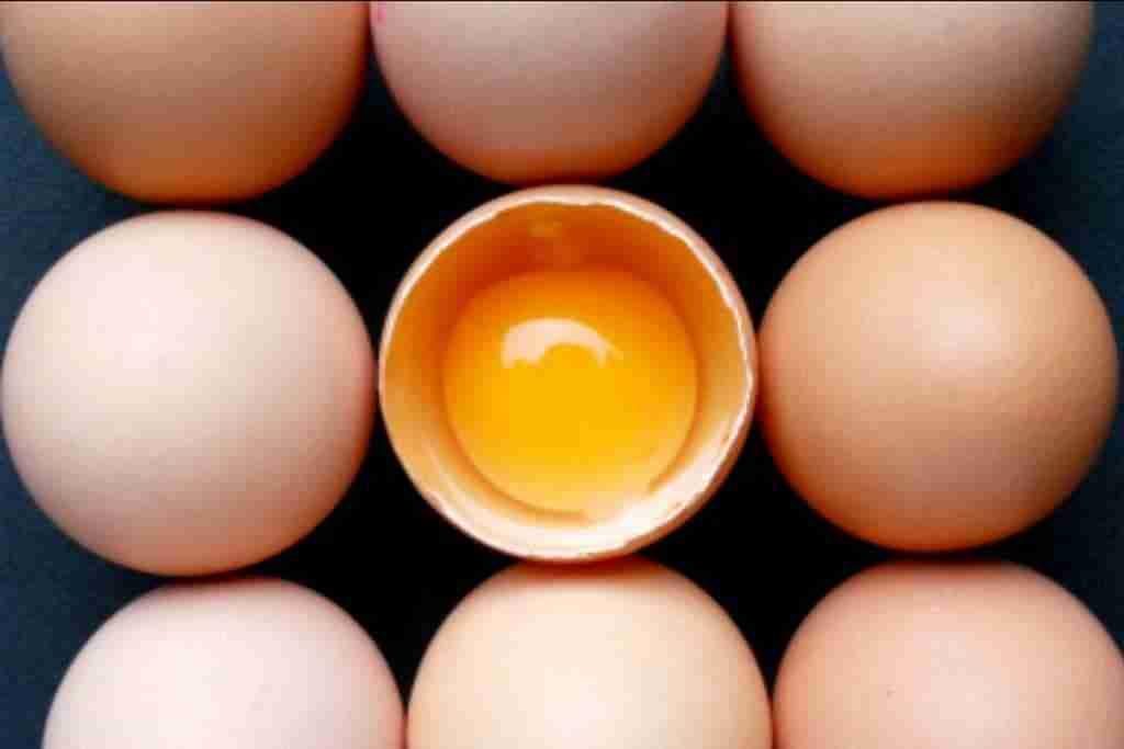 uova-uovo-in-cucina