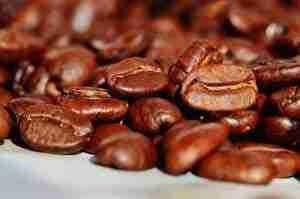 caffè primo piano chicchi
