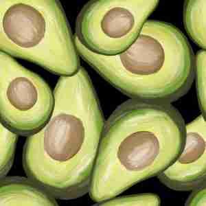 avocado-disegno