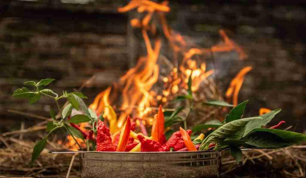 come-evitare-di-bruciare-gli-alimenti-durante-la-cottura-cinque-gusti